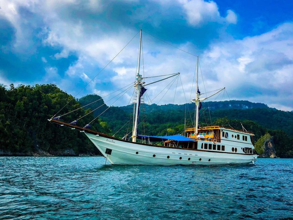 Is Komodo Diving Liveaboard Trip Right For You?