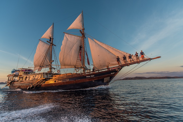 komodo diving liveaboard