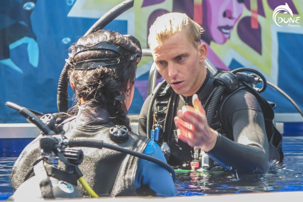 The Essentials of Scuba Diving Lessons for Beginners