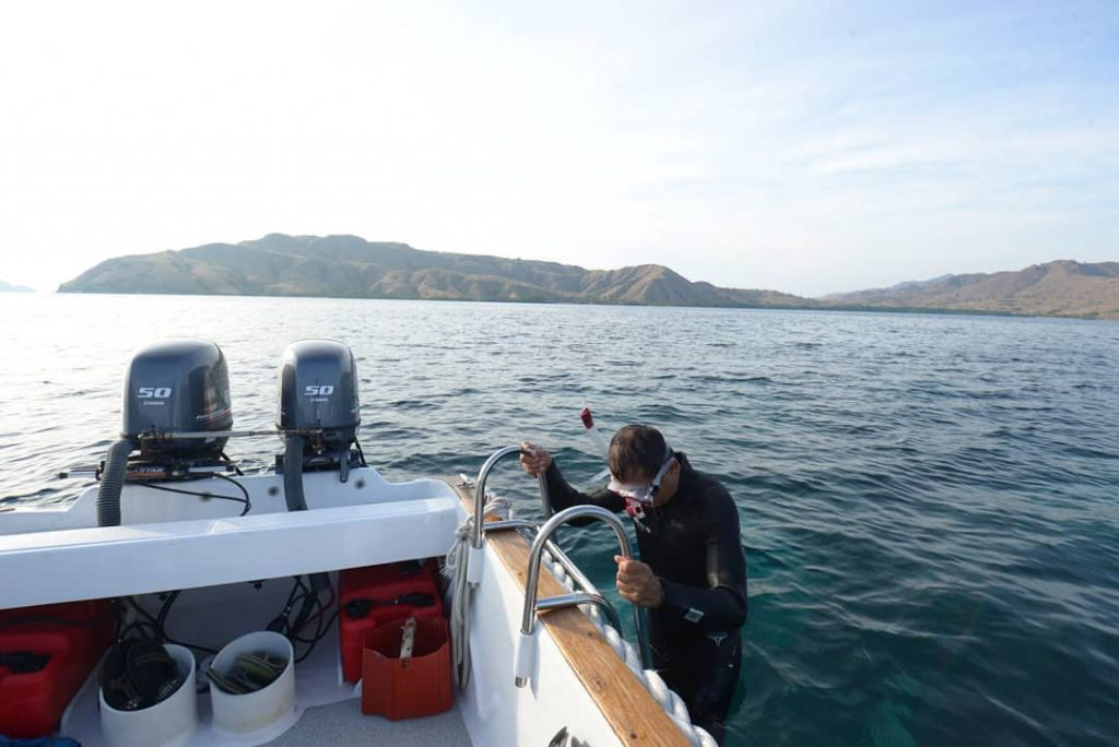 What to Do If You Plan for Diving in Komodo