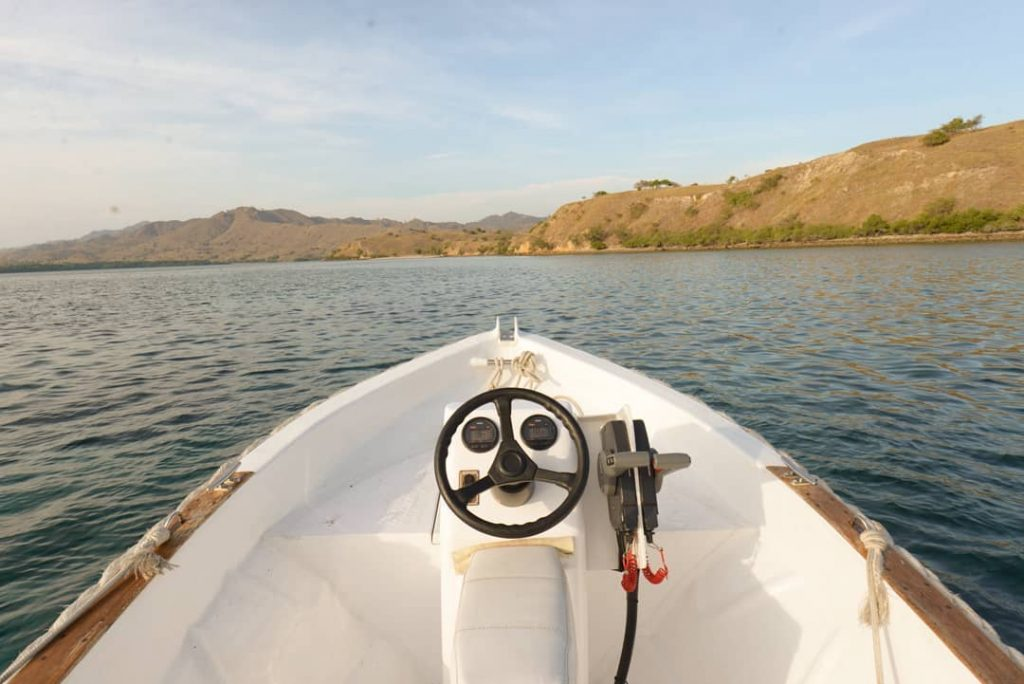 Padar Island: Between the Jaggy Hills and Savannah Fields