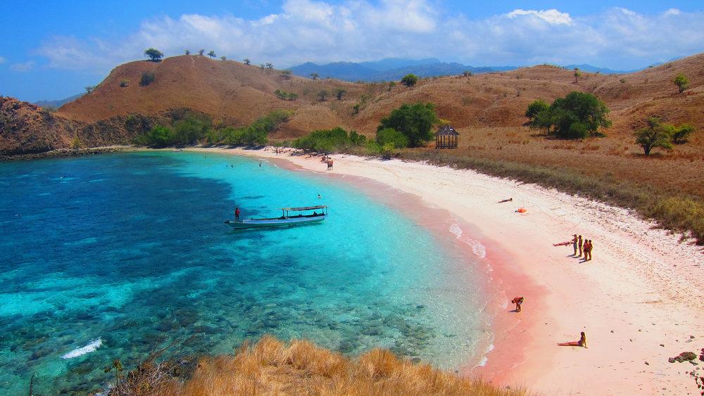 Visit pink beach   Komodo tour   Hello Flores