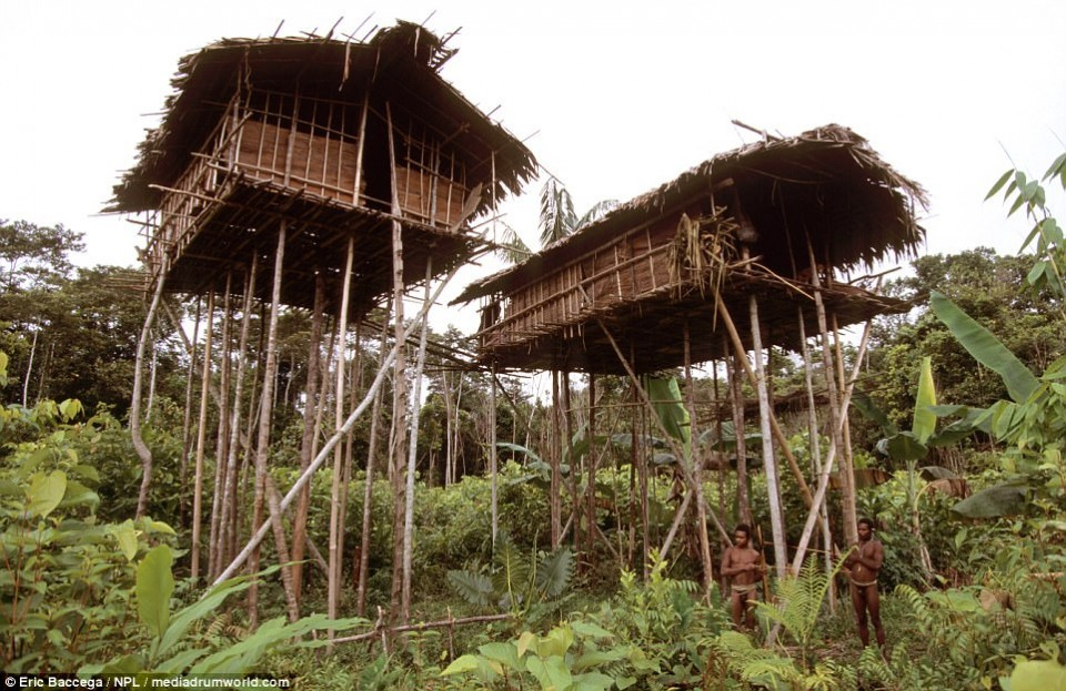 Papua Tour, Get To Know the Korowai Tribe Up Close